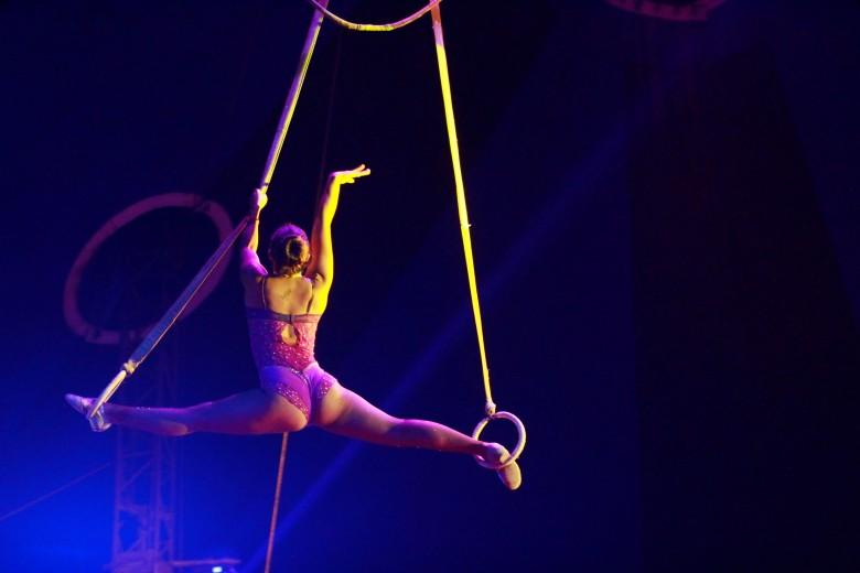 Función especial de Golden Circus en conjunto al diario la Estrella.