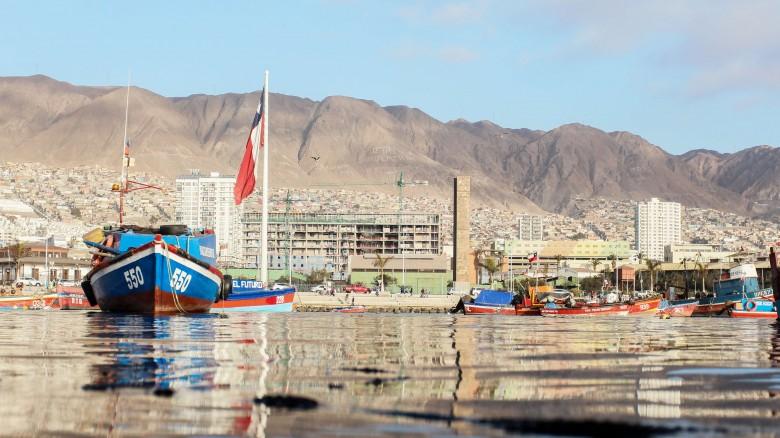 CONTRAPORTADA Un día en la caleta/terminal pesquero de Antofagasta.