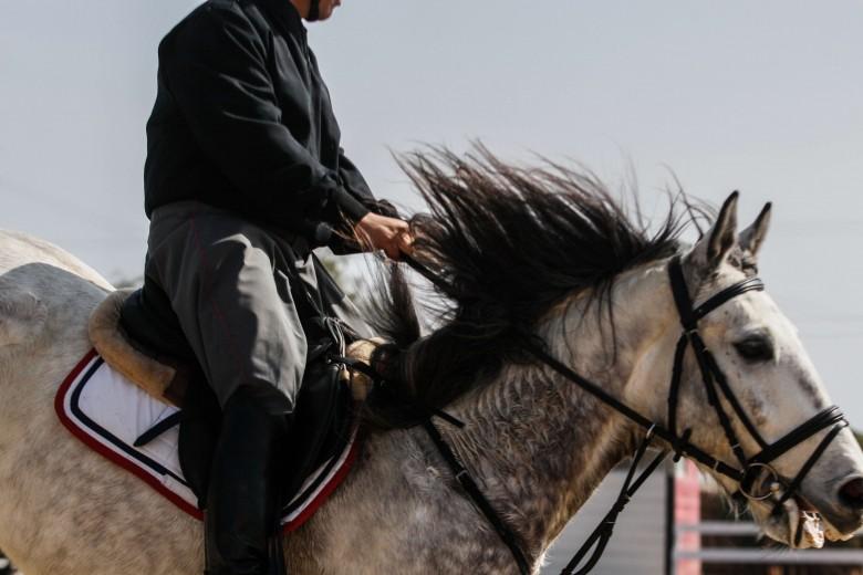 Lanzamiento campeonato de equitación (monos). Fotos: Sebastián Castro.